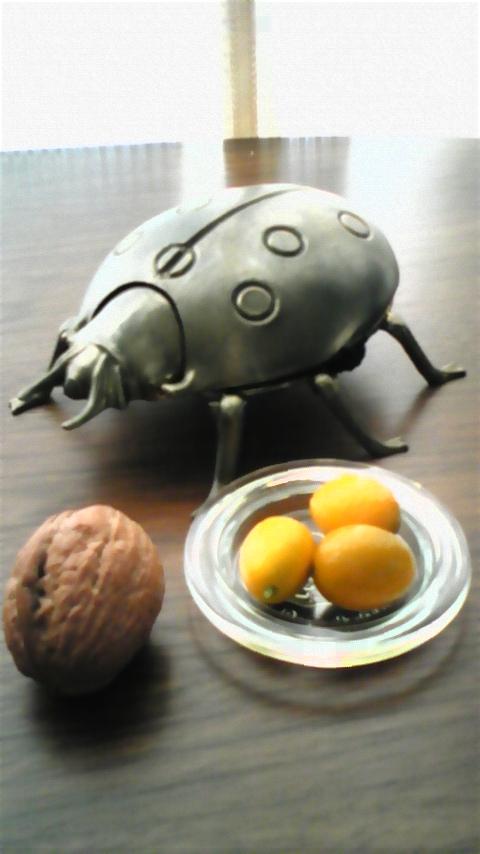 胡桃と金柑